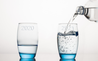 2020 Adversity vs. 2021 Optimism